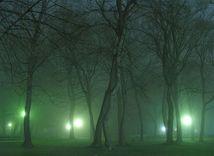 Sad Janka Kráľa, stromy, park