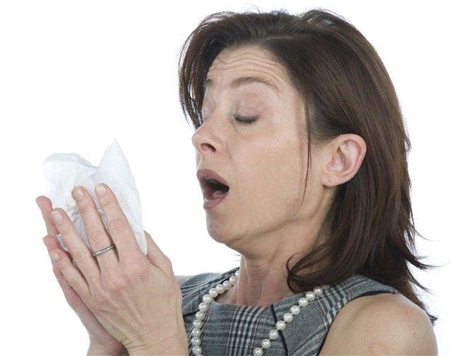 nádcha, kýchanie, prechladnutie, vírus, alergia, vreckovka