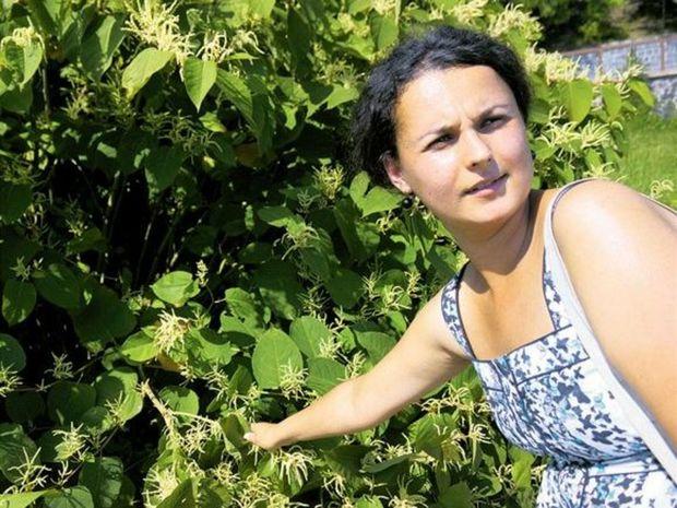 Katarína Bahnová