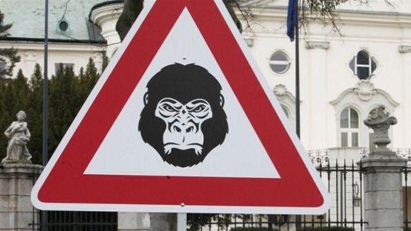 Fico môže pre kauzu Gorila pokojne spávať. Báť by sa mali iní, mieni Pellegrini - Domáce - Správy - Pravda.sk