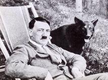 hitler, pes