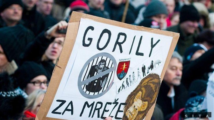 Veľké množstvo faktov z kauzy Gorila sa potvrdilo - Domáce - Správy - Pravda.sk