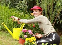 Záhrada, jar, sadenie, bývanie, kvety