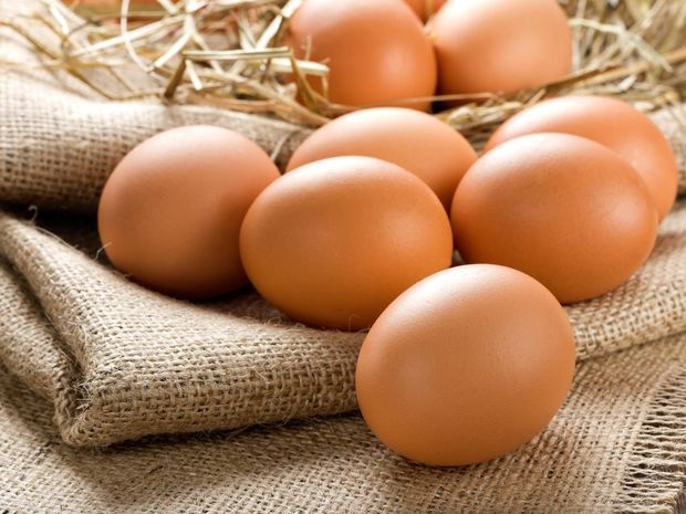 vajíčko, vajíčka, vajcia