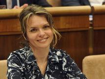 Helena Mezenská, kandidát, kandidátka na prezdenta