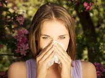 alergia, nádcha, nos, vreckovka