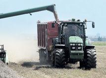 žatva, obilie, pole, poľnohospodárstvo