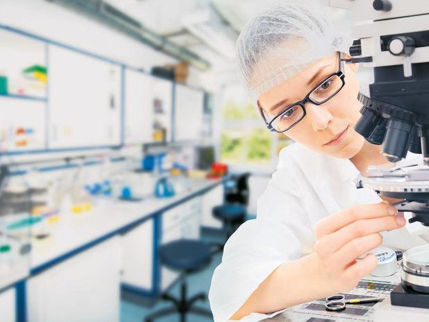 veda, výskum, práca