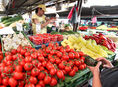 trh, trhovisko, zelenina, ovocie, paradajky, paprika