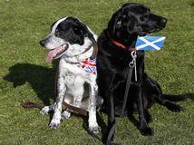 Škótsko, Veľká Británia, nezávislosť, referendum,
