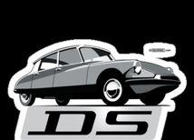 DS - logo