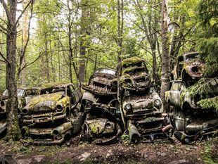 slovak press photo, prihlasené fotografie, Nórsko, autá, les, motorky