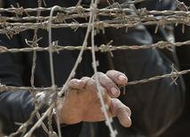 ostnatý drôt, plot, Sýria