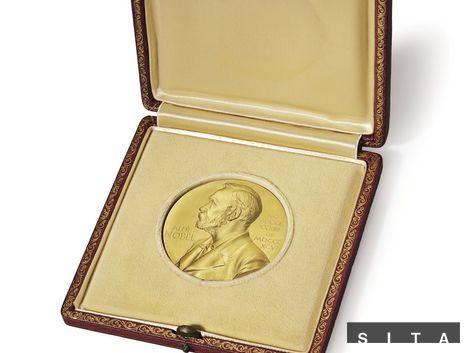 Nobelovku za medicínu získali liečbu parazitov a malárie