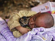 Instagram, fotografie, Reuters, 2014, výber, chlapec, mačka, mačiatko