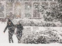 sneh, zima, mráz, kalamita, sneženie, ľad, počasie, vločky, Bratislava