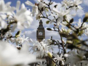 Londýn, Big Ben, kvety