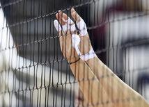 Volejbal, Ilustračné foto