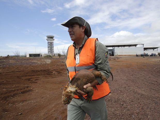 Galapágy, letisko, leguány, letisková pristávacia dráha, zelené letisko, ekoletisko