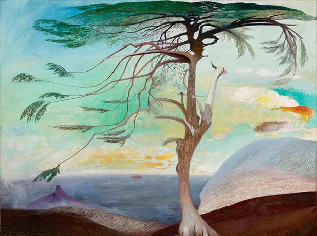 Osamelý céder namaľoval Csontváry v roku 1907. Céder má symbolizovať nezlomnosť národa.