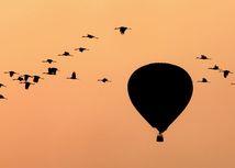 balón, žeriavy