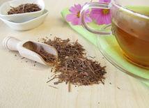 Lapacho, čaj, imunita
