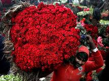 Pakistan, ruže, kytica, predavač kvetov, kvety