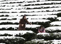 Taiwan, sneh