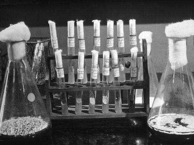 penicilíin, antibiotikum