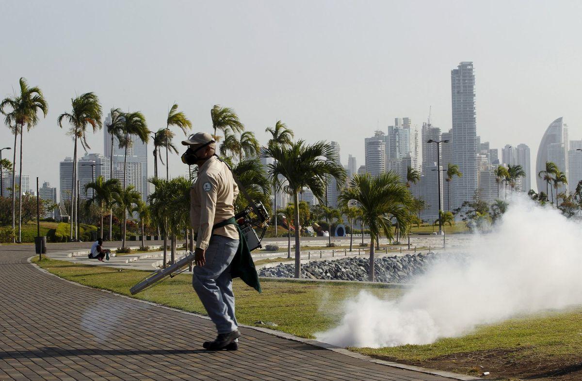 Zdravotnícky pracovník vykuruje komárov na nábreží Panama City v rámci preventívnych opatrení proti vírusu Zika.
