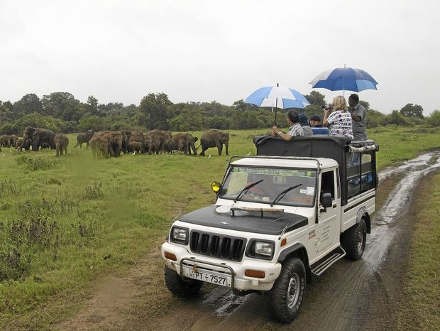 Safari v národnom parku Kawudulla.