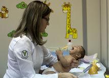 Zika, Brazília, mikrocefália