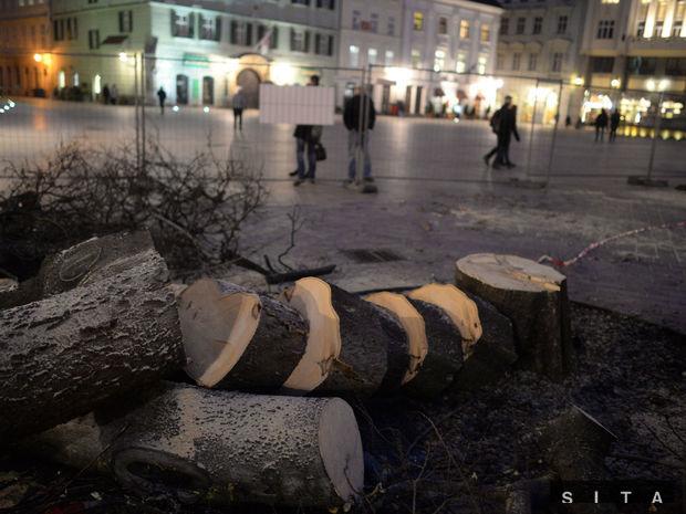 BRATISLAVA: Výrub stromov na Františkánskom