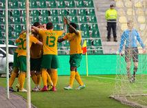 futbal, radosť, MŠK Žilina