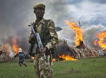 Keňa, vojak, slonie kly