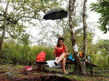 piknik, jedenie, dáždnik, les, žena, stromy