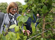 Gabriela Matečná, ministerka pôdohospodárstva, sad, Dunajská Lužná