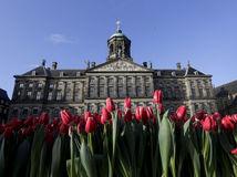 Amsterdam, Holandsko, tulipány, kráľovský palác
