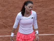 Agnieszka Radwanská