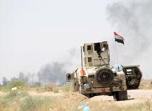 irak, fallúdža