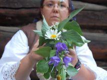 kvety, bylinky, čarovanie