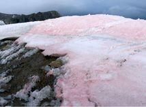 sneh, arktída