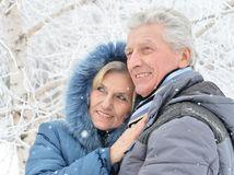 manželia, starší pár, dôchodcovia, zima, sneh, kapucňa, cestovanie, zimná dovolenka, prechádzka, relax, mráz