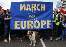 británia, brexit, protest