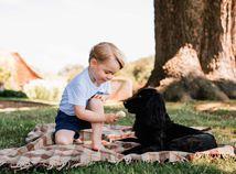 Princ George pri hre so rodinným psom Lupom.