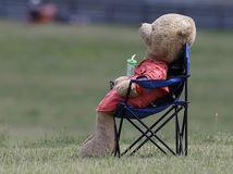 F1 GP Auto preteky, Maďarsko, medveď, plyšový maco, kostým medveďa