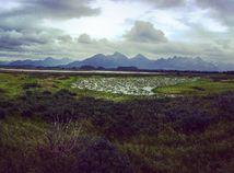 Aljaška, Copper River, mokrade
