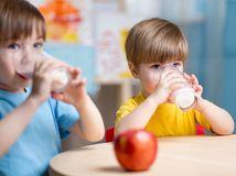 deti, mlieko, mliečne výrobky, jedáleň, škola