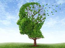 hlava, kreativita, tvorivosť alzheimer, pamäť