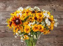 kvety, jeseň, váza